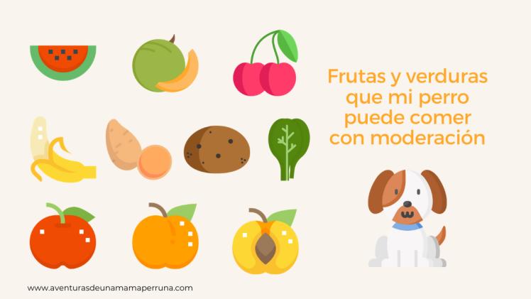 iconos frutas verduras perro
